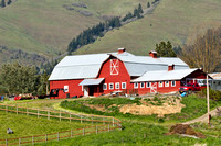 Farm on the slopes of Mt Hood
